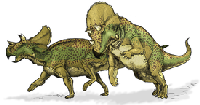 Авацератопс