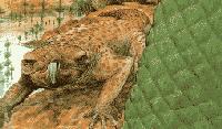 Мезозойская эпоха динозавров