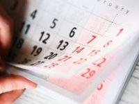 Форма n т 7: как оформить график отпусков